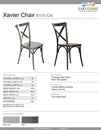 Xavier Steel Chair with Brushed Transparent Finish