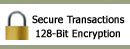 Safe & Secure Online Shopping at SeasonsTrading.com - 128-Bit SSL Encryption