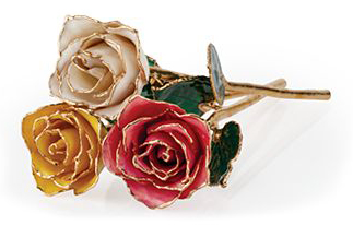 24K Gold Hand Dipped Roses