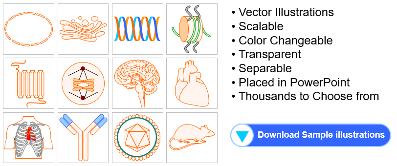 Free Biology and Medicine Illustration Toolkits for Presentations