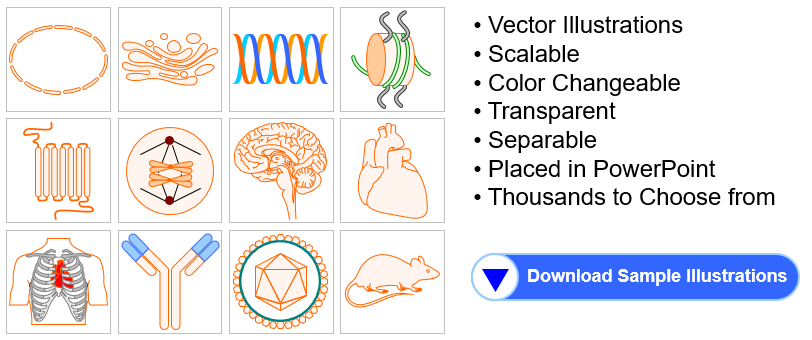 Free biology and medicine illustration toolkits for presentations ready to use biology medicine illustration toolkits ccuart Images