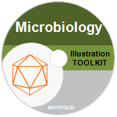 PowerPoint Drawing Toolkit Microbiology