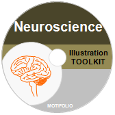 Illustration Toolkit Neuroscience