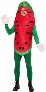 adult funny watermelon costume