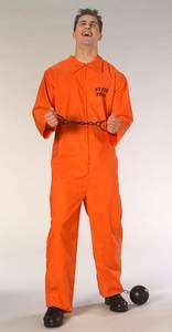 orange prisoner jumpsuit costume