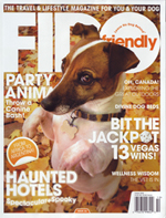 Beyond the Crate Featured in FIDO Magazine!