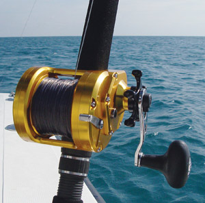 Penn fishing reels fishing reels for Penn deep sea fishing reels