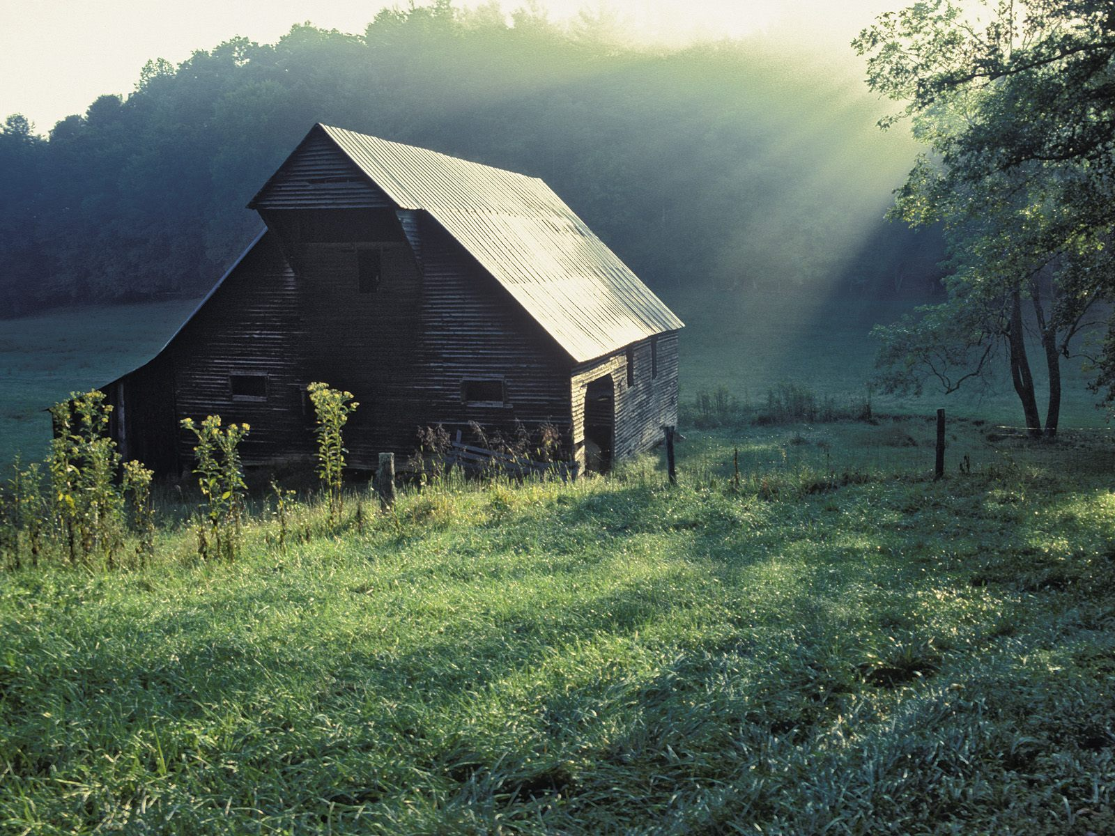 Tennessee Sscenery