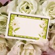 Gold Foiled Borders with Embossed Daisies and Dots.jpg