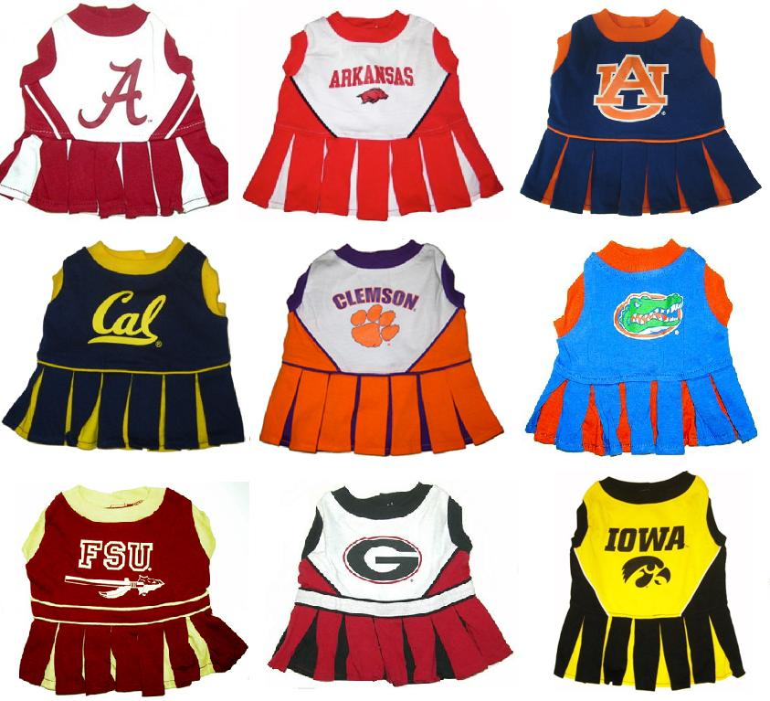Alabama Crimson Tide Arkansas Razorbacks Auburn Tigers Cal Berkeley Clemson Tigers Florida Gators Florida State Georgia Bulldogs Iowa Hawkeyes
