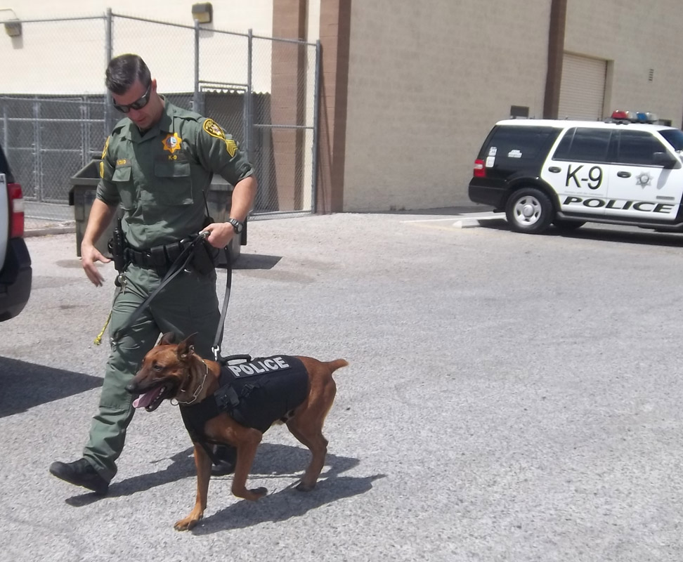 Arizona Canine Unit Training Demonstration